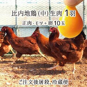 比内地鶏 肉&卵セット 中型1羽 生肉(正肉 約1kg・もつ 約150g) 卵 10玉 秋田県大仙市産 むね/もも/ささみ/せせり/手羽先/皮/ぼんじり/ハツ/レバー/砂肝 送料無料