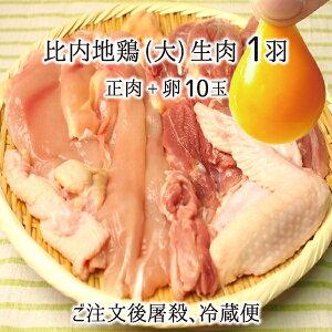 比内地鶏 肉&卵セット 大型1羽 生肉(正肉 約1.2kg) 卵 10玉 秋田県大仙市産 むね/もも/ささみ/せせり/手羽先/皮/ぼんじり 送料無料