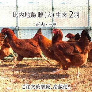 比内地鶏 雌 大型 2羽 生肉(正肉 約2.4kg・もつ 約300g) 秋田県大仙市産 むね/もも/ささみ/せせり/手羽先/皮/ぼんじり/ハツ/レバー/砂肝 送料無料