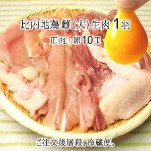 比内地鶏 生肉&卵セット 雌 大型 1羽 (正肉 約1.2kg) 卵10玉 秋田県大仙市産 むね/もも/ささみ/せせり/手羽先/皮/ぼんじり 送料無料