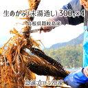 生めかぶ(未湯通し) 約1.2kg(約300g×4パック) 島根県隠岐の島産 メカブ 急速プロトン冷凍 送料無料