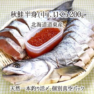 一本釣り活〆 天然秋鮭(中) 半身 切り身 約1.2kg、いくら200g 個別真空パック 熟成鮭 北海道道東産 送料無料