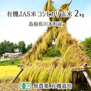 有機JAS認定米 コシヒカリ 玄米 2kg 無農薬 有機栽培 はで干し 天日乾燥 自家採種 島根県川本町 2020年産 単一生産者米 送料無料