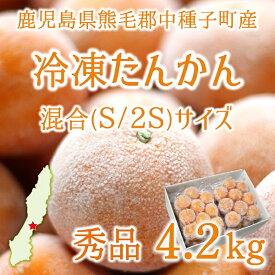 冷凍たんかん 秀品 4.2kg サイズ混合(S/2S) 39〜60玉 鹿児島県中種子町産 送料無料(代引不可)