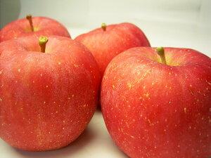 糀の[健康ドリンク]・フルーツ甘糀(りんご)550g