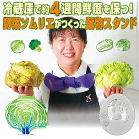 【メーカー公式】 野菜 鮮度 保つ 日本製 熱伝導 野菜 鮮度長持ち 野菜 おいしい 野菜 ソムリエ 野菜ソムリエ ステンレス 安全 日本製
