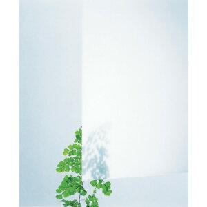光 アクリルキャスト板 乳白半透明 2X300X450 穴ナシ AC32-234