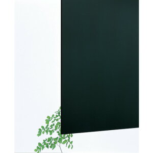 【直送】【代引不可】 光 アクリルキャスト板 黒 3X600X900 穴ナシ AC96-369