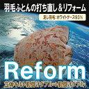 Reform hadawg