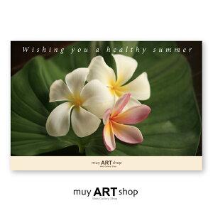 名入れグリーティングカード 100部 | 花の香り/ Bali | CG02-SG-100|オリジナル・ポストカード