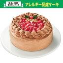 【アレルギー対応】クリスマス チョコレートケーキ 5号 (4〜6人分目安)タカキベーカリー 卵・乳・小麦を使わない 米…