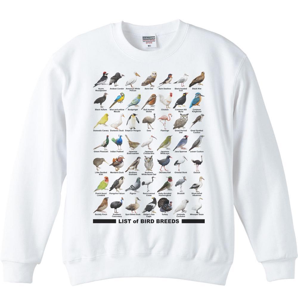 鳥のリスト/トレーナー