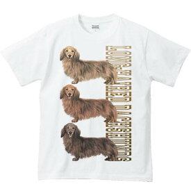 ミニチュア ダックスフンド(三色ダックス)犬/半袖Tシャツ
