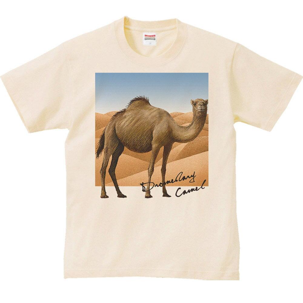 ヒトコブ ラクダ +背景/半袖Tシャツ