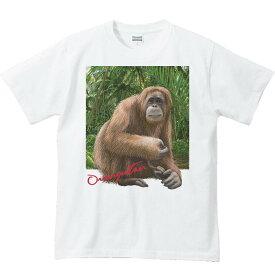 オランウータン +背景/半袖Tシャツ