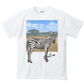 シマウマ +背景/半袖Tシャツ