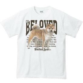 柴犬(愛犬シリーズ)/半袖Tシャツ