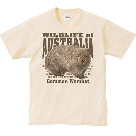 ヒメ ウォンバット(オーストラリアの生物)/半袖Tシャツ