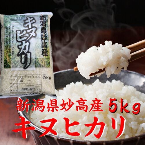 新潟県 妙高産キヌヒカリ 5kg 「29年産 新米」
