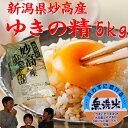 新潟妙高産「一等米」ゆきの精 5kg「28年産 無洗米」