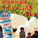 無洗米 新潟県 妙高産 こしいぶき5kg「29年産 無洗米」