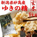 新潟県 妙高産ゆきの精【玄米】5kg【28年産 一等米】