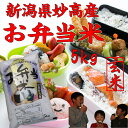 【お弁当米5kg】【玄米】新潟県妙高産28年産