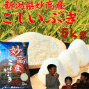 新潟県 妙高産こしいぶき5kg 「29年産 1等米」