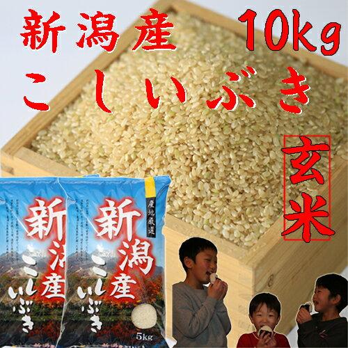 新潟産こしいぶき10kg【玄米】5kg×2個【30年産 新米】