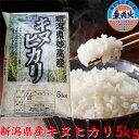 【無洗米】 新潟県産キヌヒカリ 5kg「30年産 無洗米」 新米