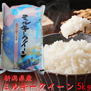 【ミルキークイーン 5kg】【新潟県産 米】令和元年 2019年