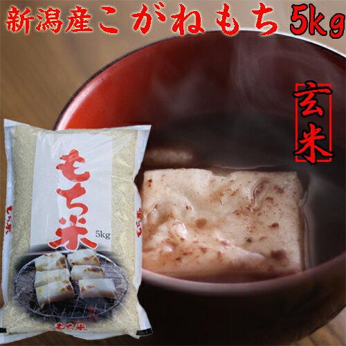 新潟県こがねもち5kg(餅米)(玄米)「30年産 餅米5kg」(もち米です)