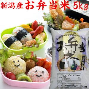 お米【お弁当米】5kg【お弁当 米5kg】お弁当米令和2年