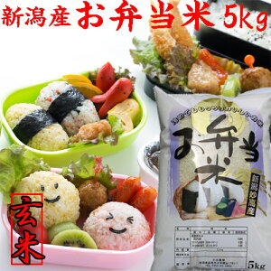 令和元年【お弁当米5kg】【玄米】新潟県産お弁当に最適なお米