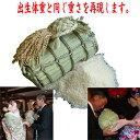 3kgの米俵に3000g〜3500g用(出生体重に合わせて作成します) ウエイトライス