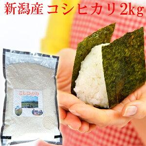 新米 真空 お米 コシヒカリ 2kg 令和3年 新潟県産 コシヒカリ 2kg コシヒカリ 2kg 真空