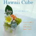 ハワイアン プリザーブドフラワー クリスマス キューブ プレゼント