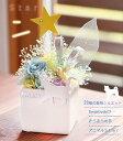 【送料無料】プリザーブドフラワー ギフト 星 スター ケース入り 犬 猫 うさぎ 花 アニマルStarクリスマス 発表会 誕…