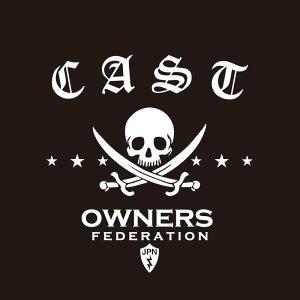 カッティングステッカー 240×280サイズ ダイハツ(DAIHATSU)CAST キャスト pirates 車 カー ステッカー かっこいい おしゃれ アクセサリー シール ガラス オーダーメイド 転写[◆]