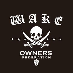 カッティングステッカー 290×330サイズ ダイハツ(DAIHATSU)WAKE ウェイク pirates 車 カー ステッカー かっこいい おしゃれ アクセサリー シール ガラス オーダーメイド 転写[◆]