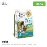 リアルネイチャー ホリスティックドッグフード N0.3オーシャンサーモン【アレルギーに配慮】 10kg (犬用 プレミアムフード)