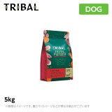 トライバル【フレッシュサーモン】400gドッグフード(ドライペットフード犬用品)