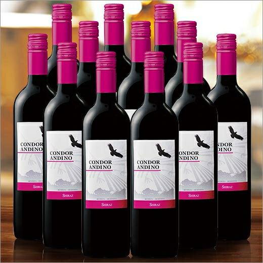 【送料無料】コンドール・アンディーノ・シラーズ12本セット(アルゼンチン/赤・FB)750ml[赤ワイン][ワインセット][赤:フルボディ] 【7777382】