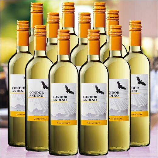 【送料無料】コンドール・アンディーノ・シャルドネ12本セット(アルゼンチン/白・辛口)750ml[白ワイン][ワインセット][白:辛口] 【7777384】