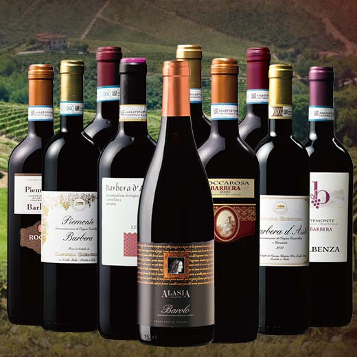 【送料無料】バローロ入り!ピエモンテお得10本セット 第2弾 [赤ワイン][赤:フルボディ][ワインセット] 【7781240】