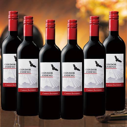 コンドール・アンディーノ・カベルネ・ソーヴィニヨン1種6本セット [赤ワイン][赤:フルボディ][ワインセット] 【7786044】