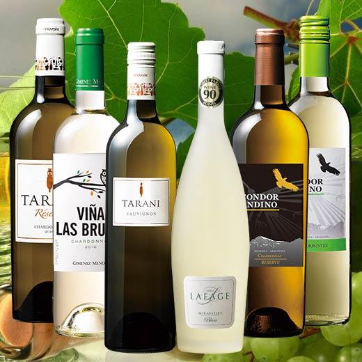 【送料無料】これを飲めばMy Wine CLUBがわかる!白ワインデイリー6本セット [白ワイン][ワインセット][白:辛口:中辛口]【7786059】