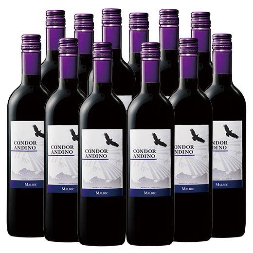 【送料無料】コンドール・アンディーノ・マルベック12本セット(アルゼンチン 赤 フルボディ) [赤ワイン][ワインセット]  【7777380】
