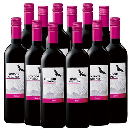 【送料無料】コンドール・アンディーノ・シラーズ12本セット(アルゼンチン 赤 フルボディ) [赤ワイン][ワインセット]  【7777382】