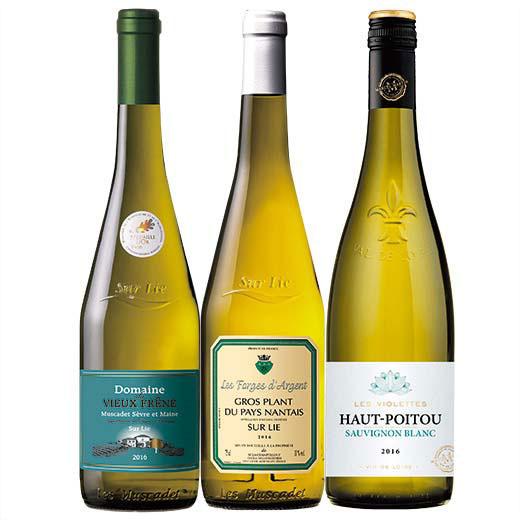 ロワール白ワイン3アペラシオン飲み比べ3本セット [白ワイン][ワインセット]  【7782002】